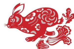 oroscopo cinese coniglio